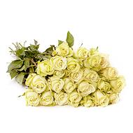 buchet-de-trandafiri-albi-QKPIU
